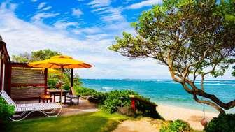OCEAN SUN bungalow: deck thumb