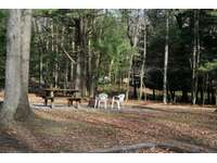 Picnic area at Old Hickory Cabin. thumb