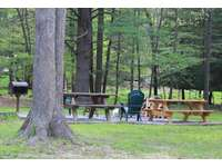 Another view of the picnic area, picnic table, campfire area and charcoal grill thumb