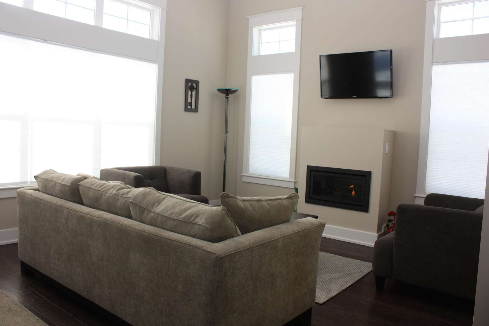 Comfortable living room with fireplace, TV and fold out couch