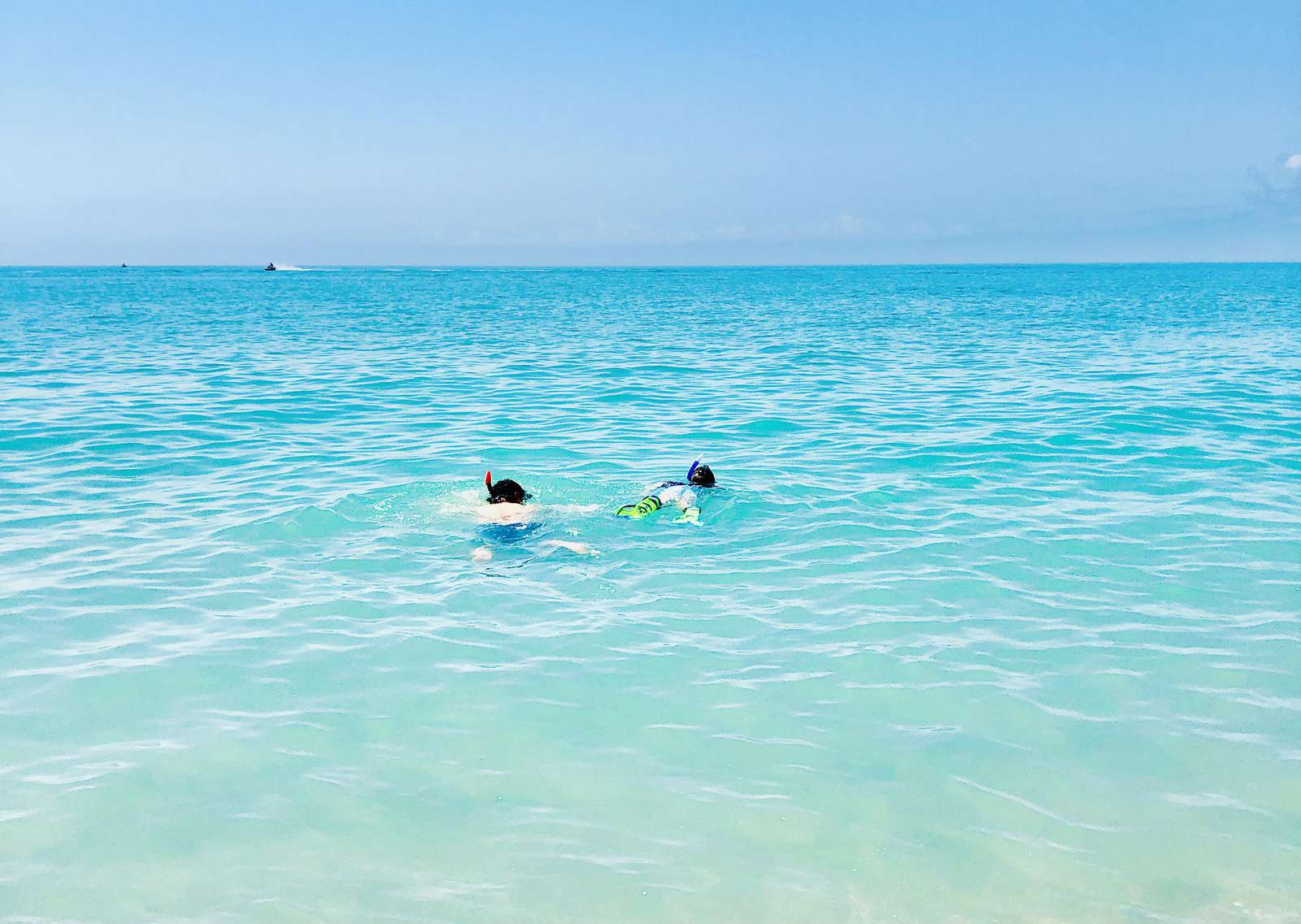 Snorkeling in the Gulf