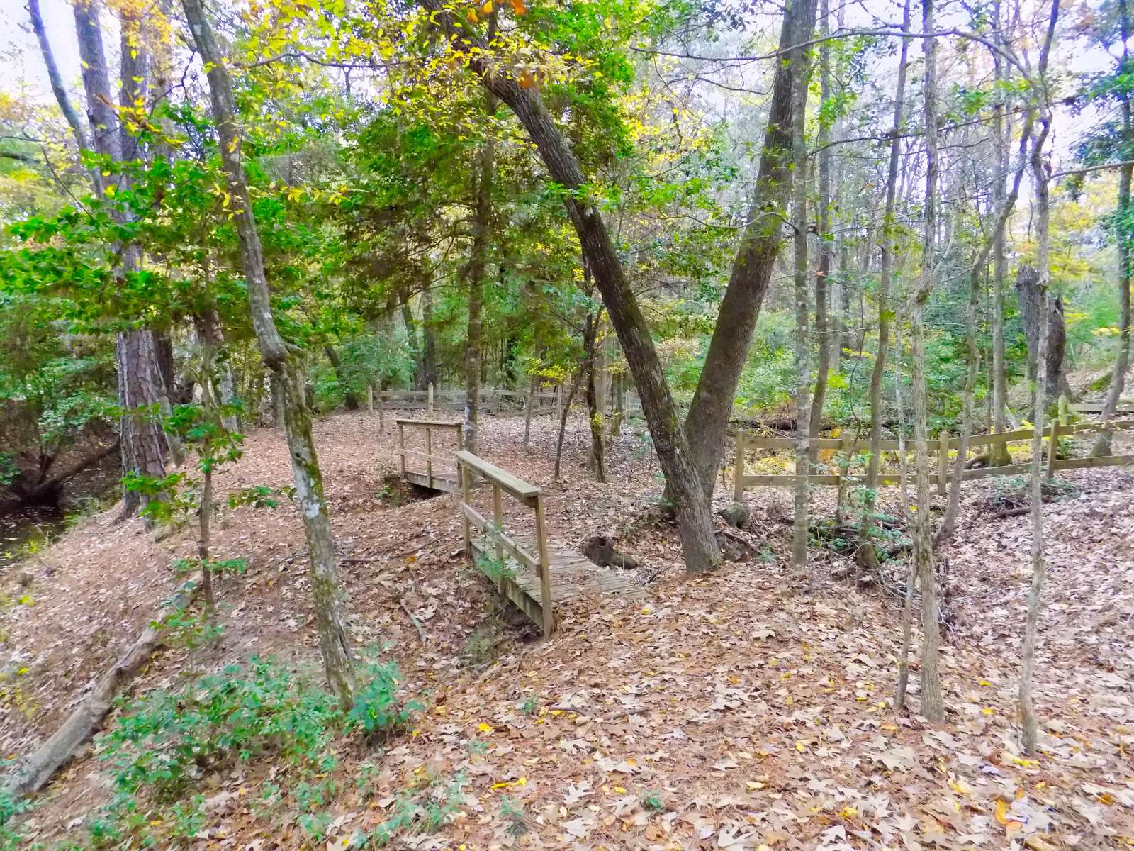 There are small bridges and benches scattered around the property.