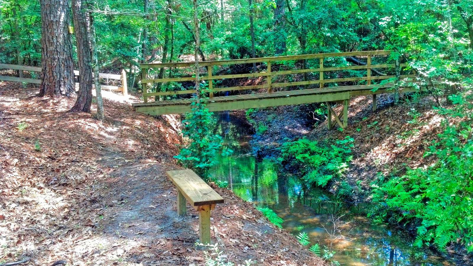 As we get down the hill to the creek we come upon the bridge. Cross it and take the dirt road right for a walk or left to get to the lake. Let's check out the lake