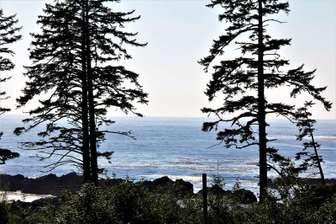 Pacific Ocean view from Beach Beach Villa thumb