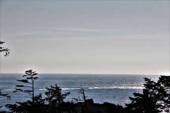 Open Pacific Ocean thumb