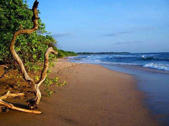 Amazing Langosta Beach