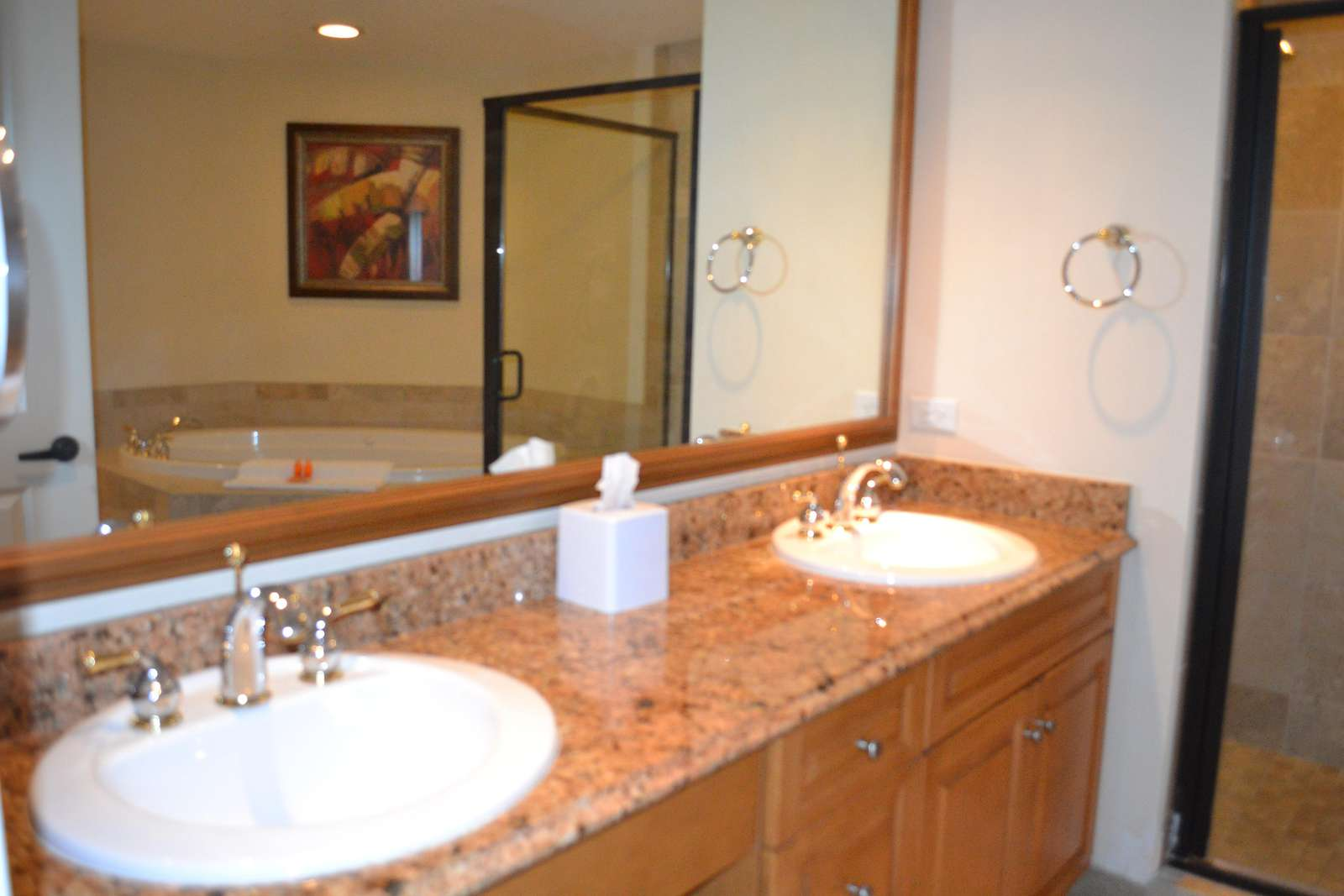 Master Bath Double sinks and granite tops, Walk in Shower & Whirl Pool tub
