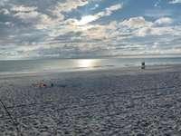 Beach View thumb
