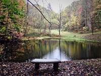 Bring your Poles, there is a great Fishing Pond, just a few minutes walk from the Cabin! thumb