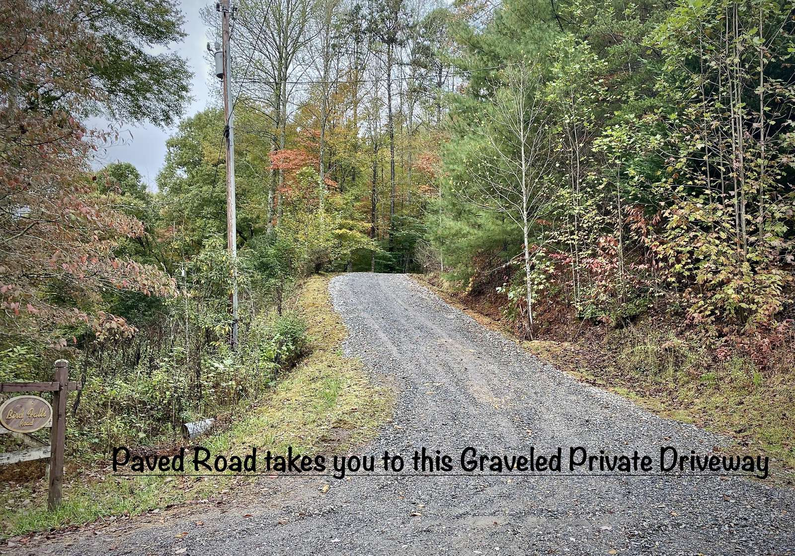 Paddlers Retreat's Private Driveway. The driveway curves to the right and the Cabin is within 10-15 yards (I don't think this driveway is steep, but folks used to flat land may disagree).