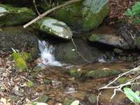 Creek sounds are ever present and soothing! thumb