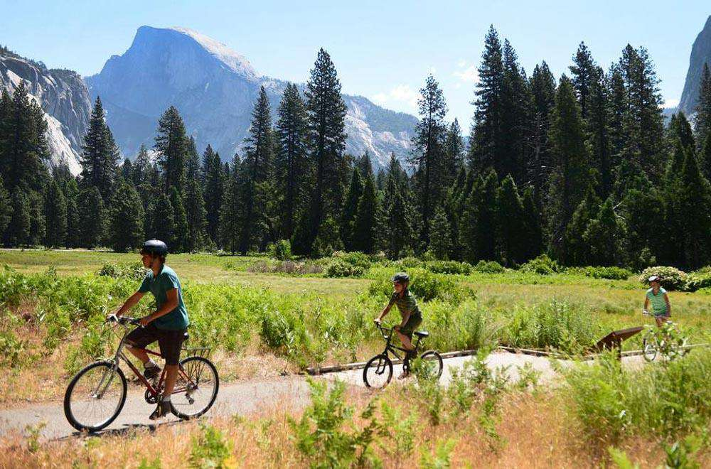 Ride your bike through Yosemite Valley.