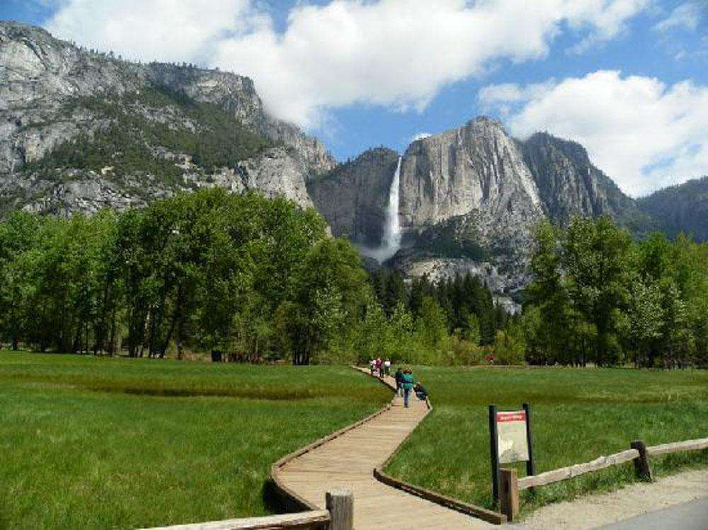 A pathway through the meadow in front of Yosemite Falls.