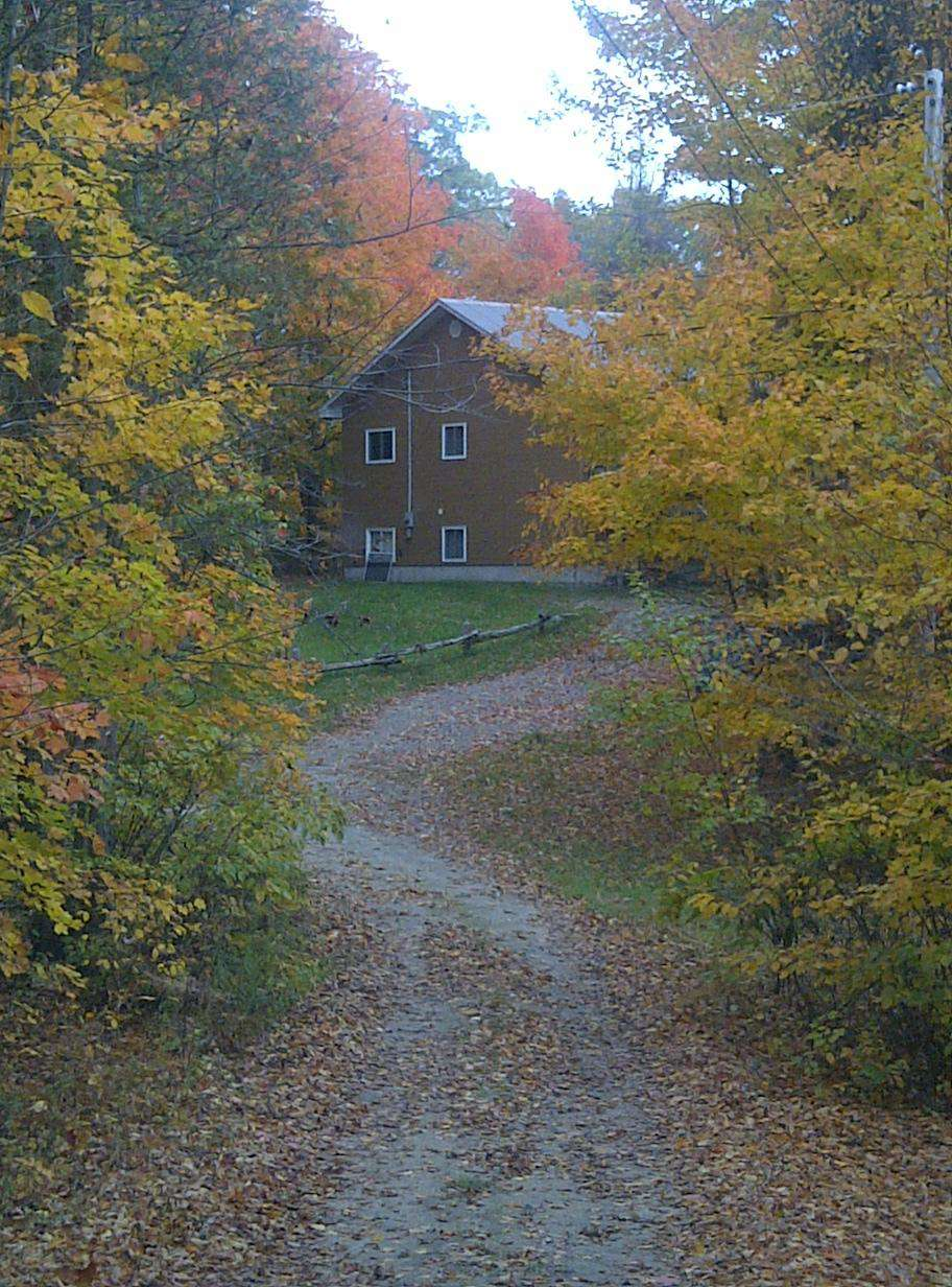 Laneway oming up to the cottage during the fall months!