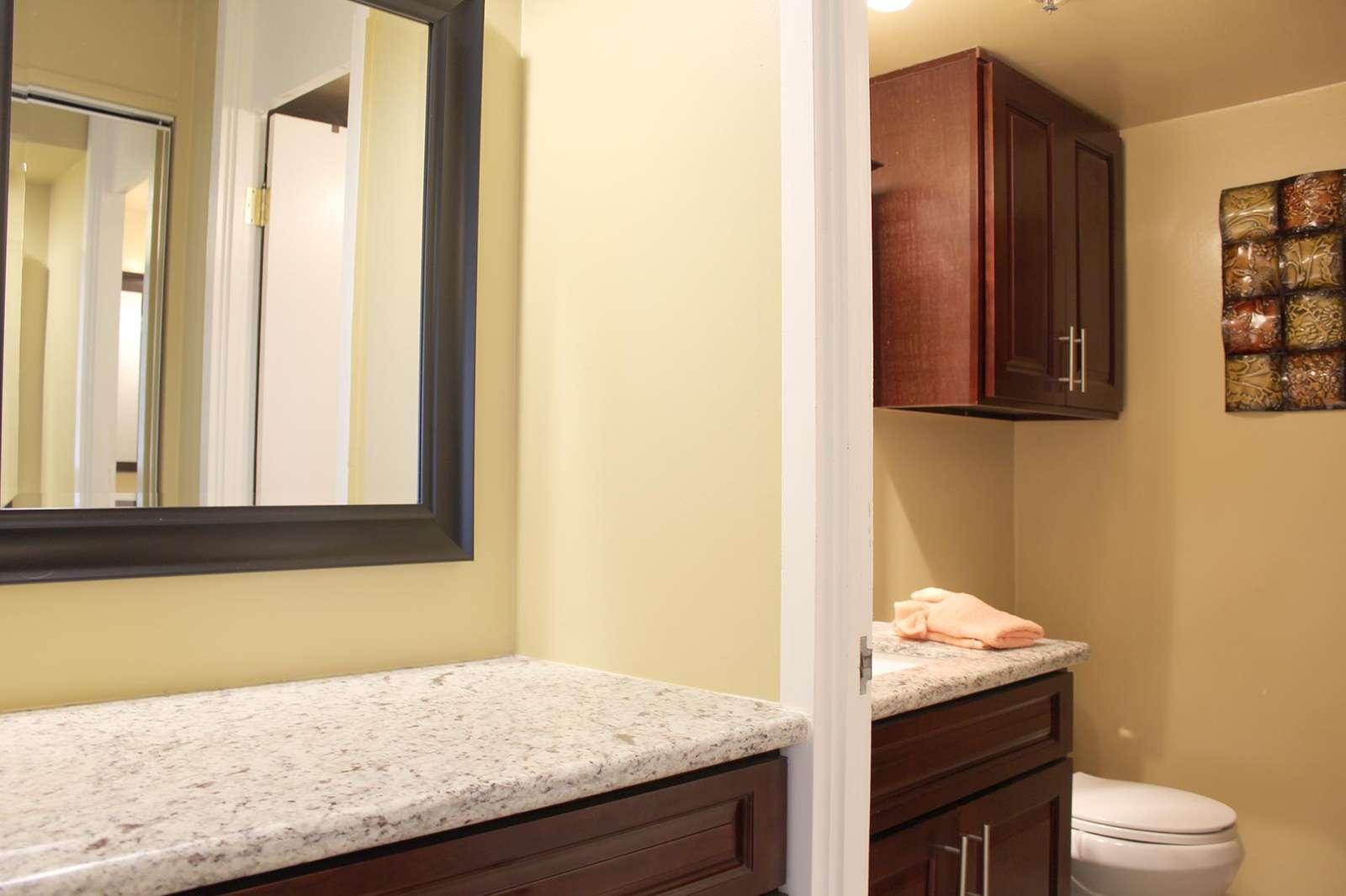 Vanity and Bathroom area