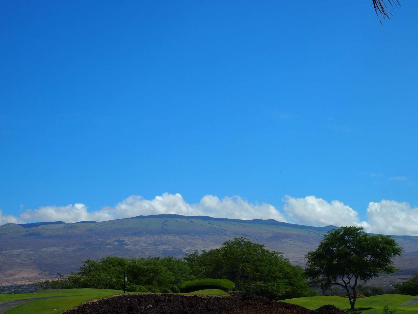 Beautiful view of the Kohala Mountain