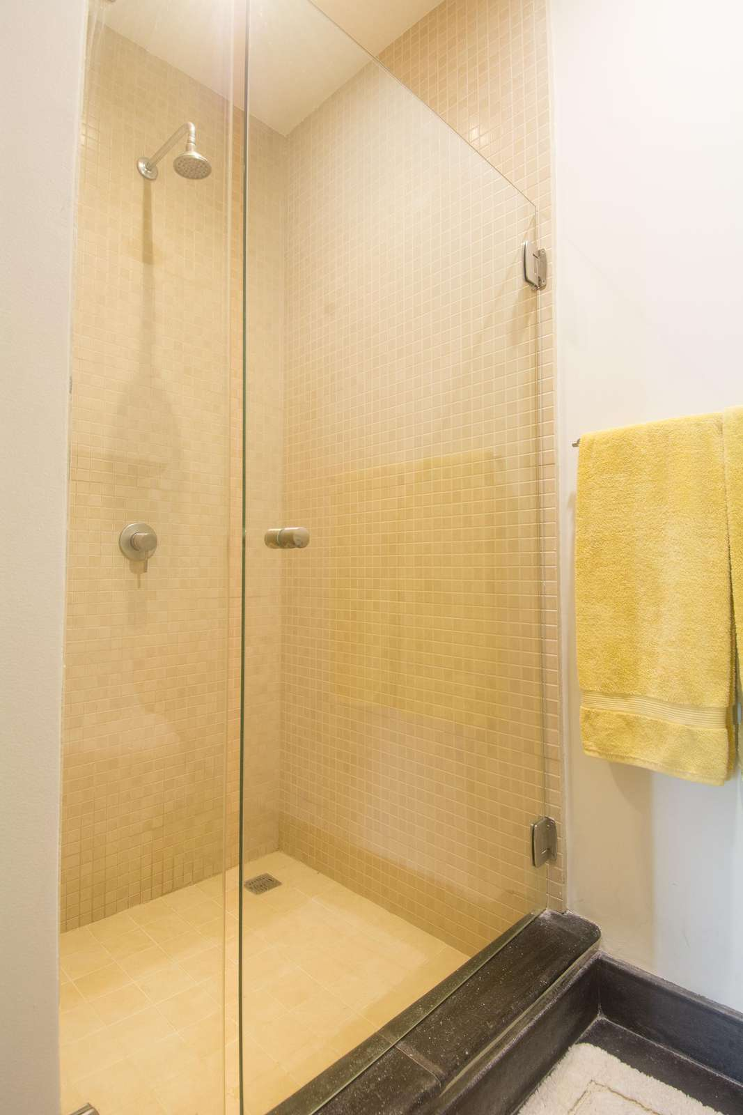 Walk in shower in guest bathroom