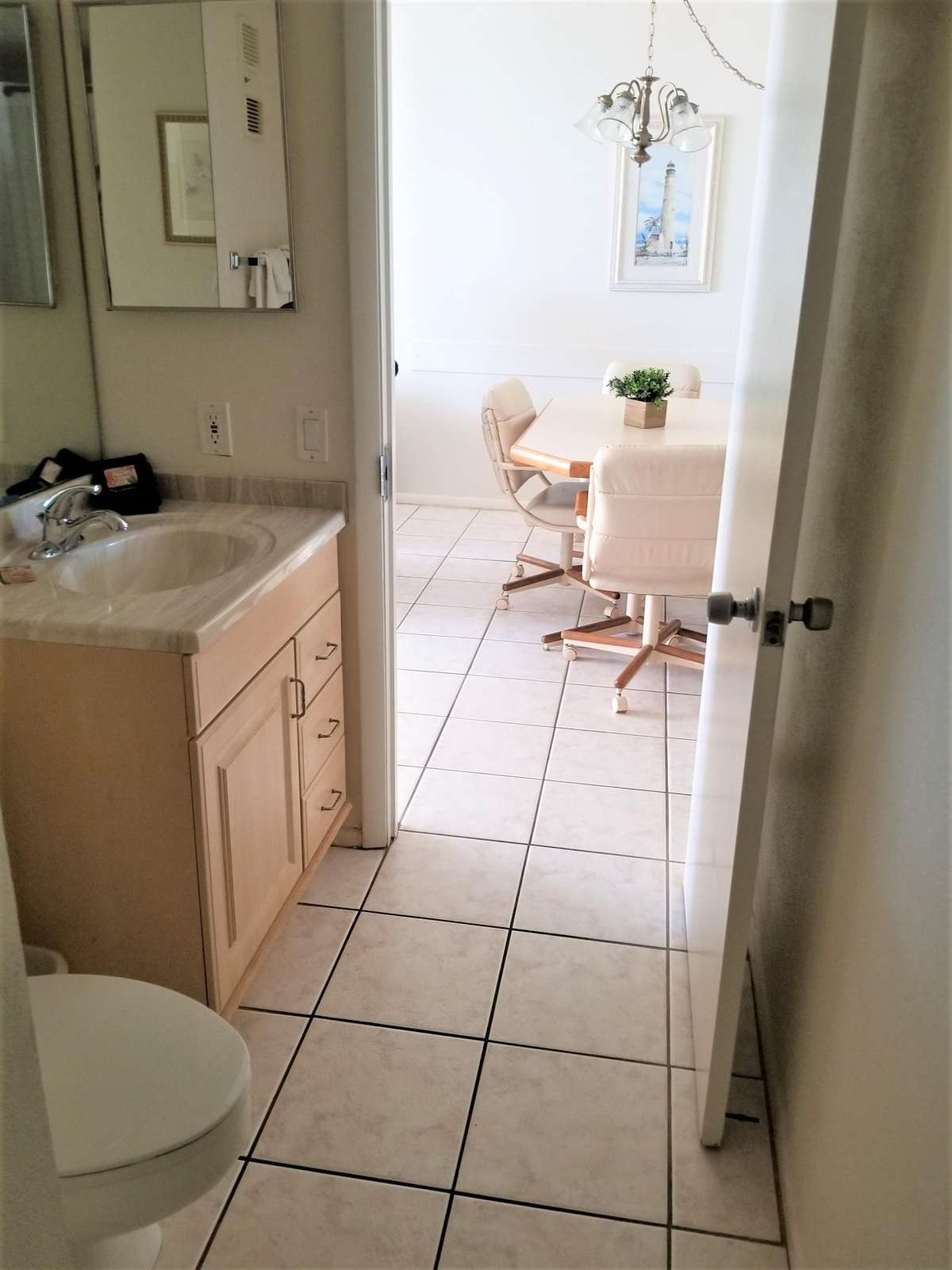Guest bath (tub / shower)