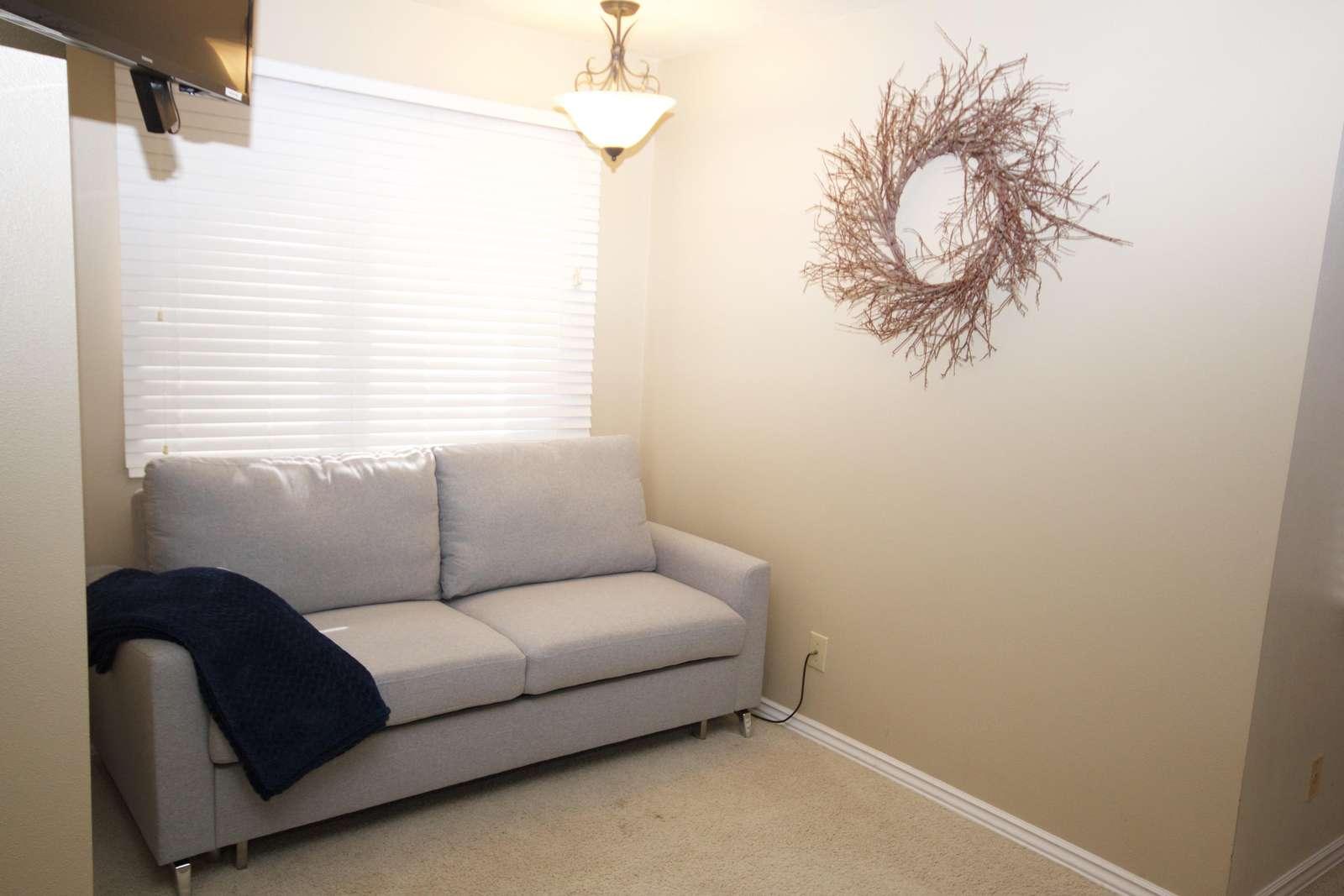 Sleeper Sofa in Master Bedroom