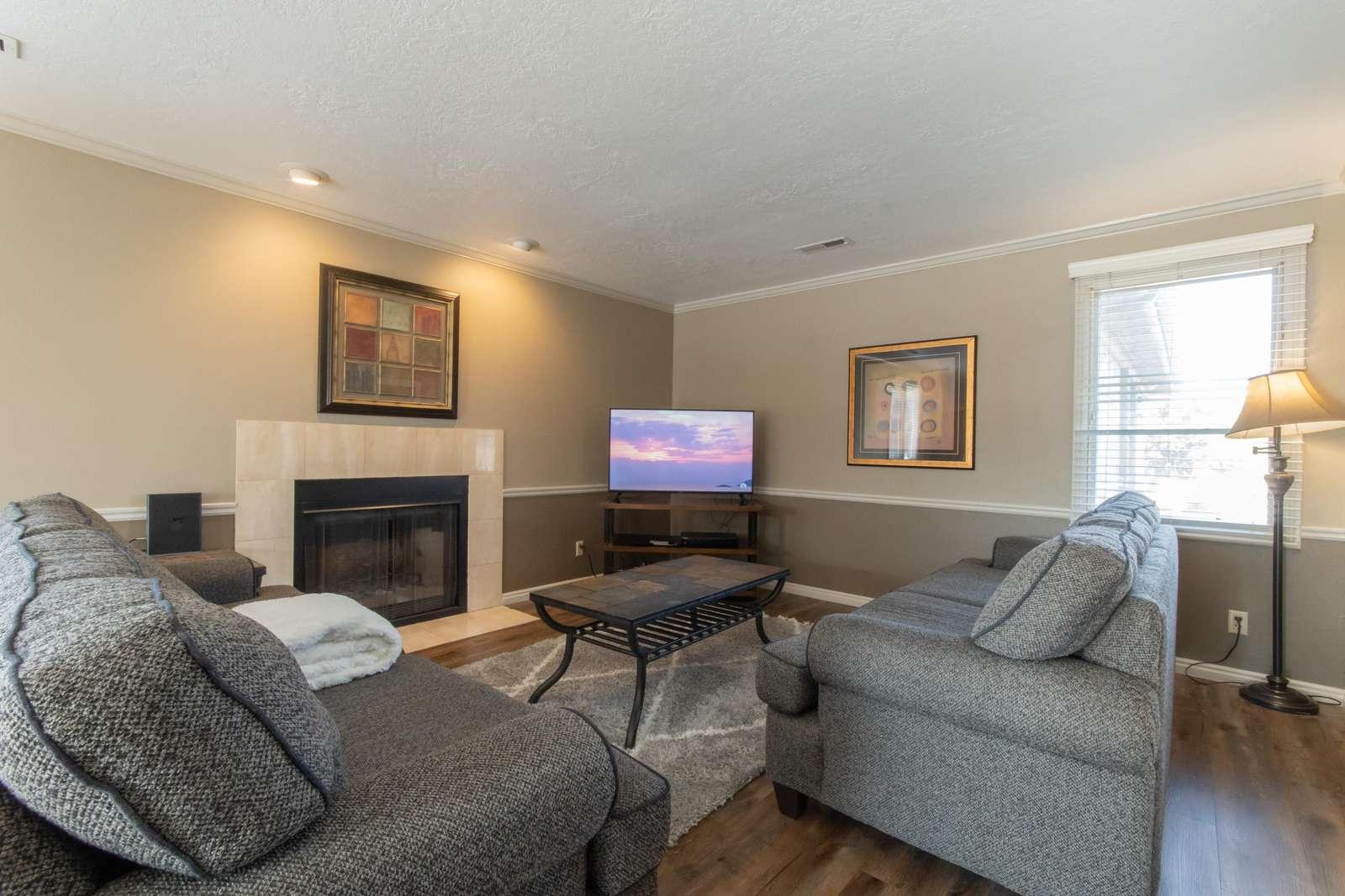Large Living Room - 2 Regular Size Sofas