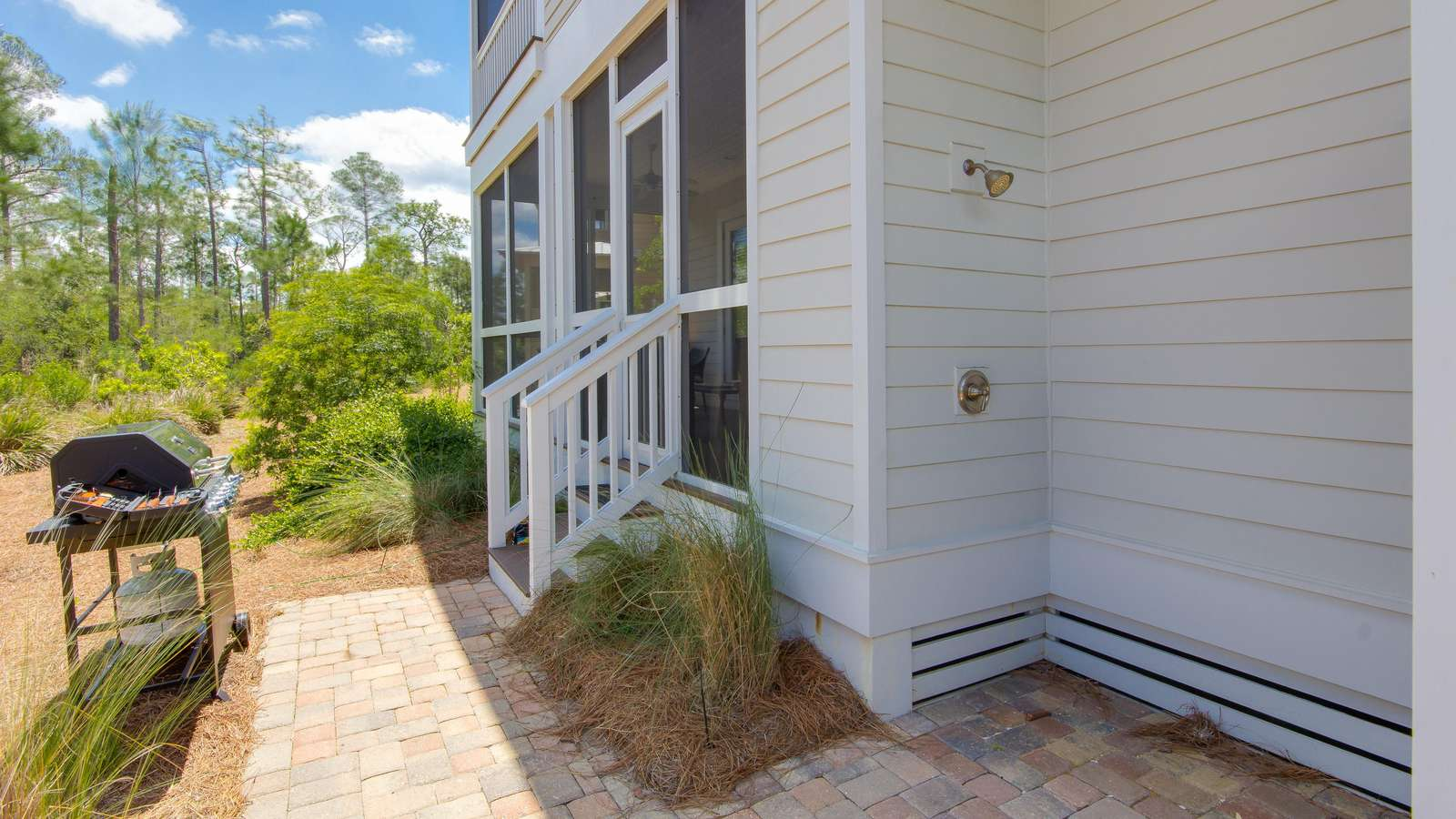 gas grill, shower, backyard privacy