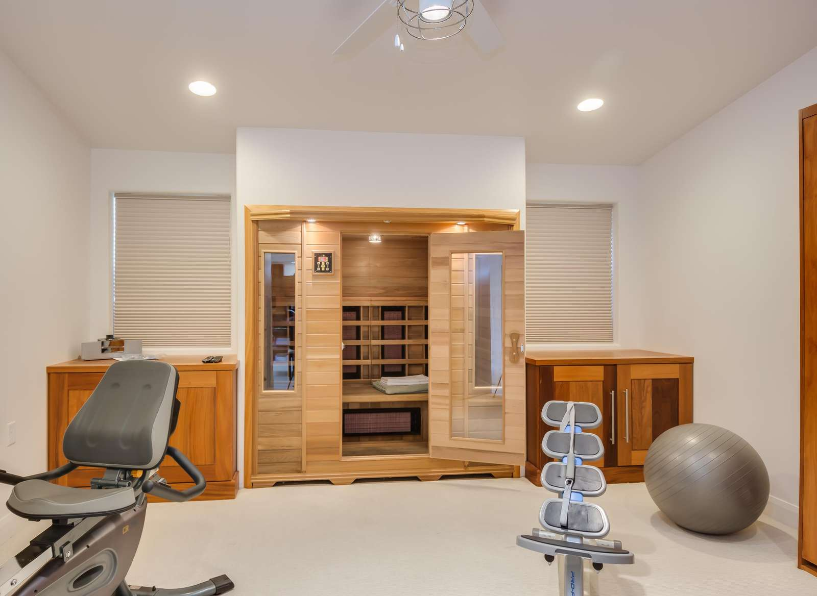 Personal Sauna/ Exercise Room
