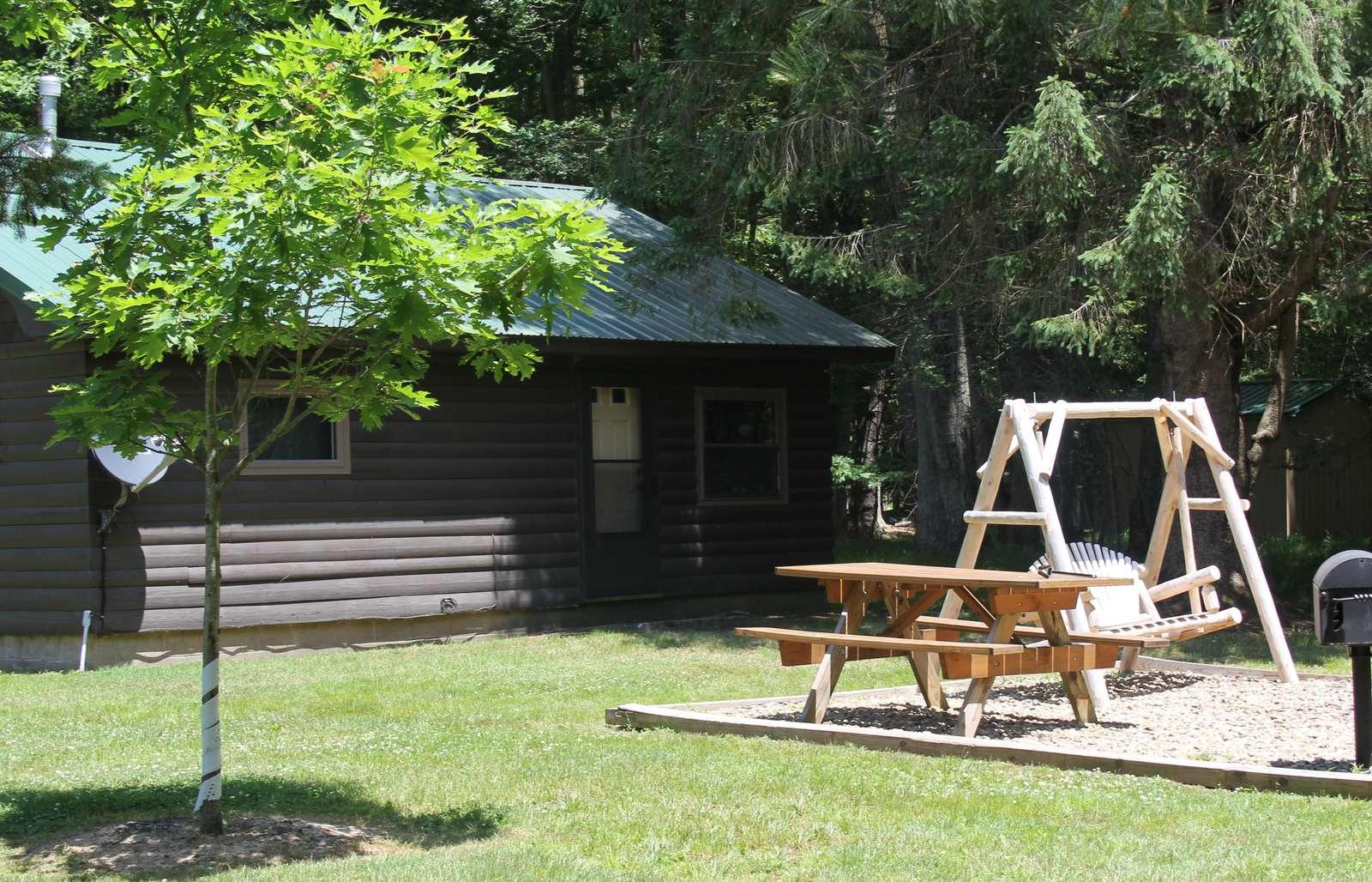 Twin Oaks Cabin showing back yard with swing - property