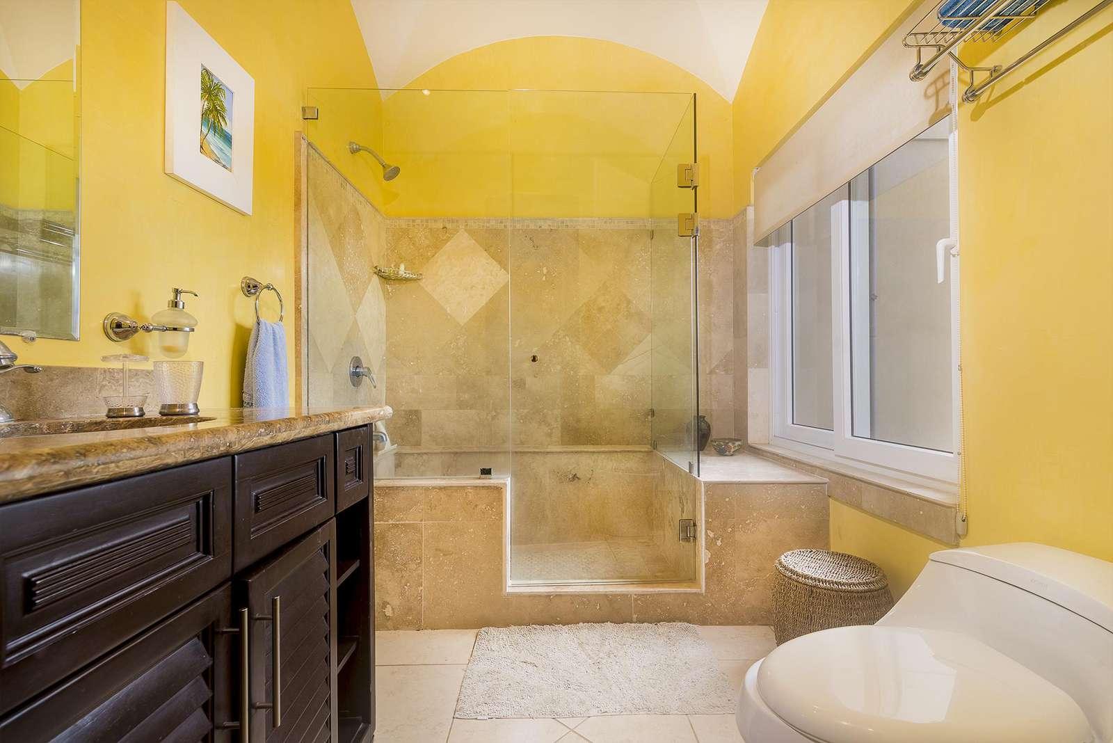 Master bathroom, large walk in shower with ocean views