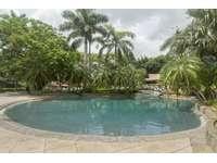 Lagoon style pool and swim up bar thumb