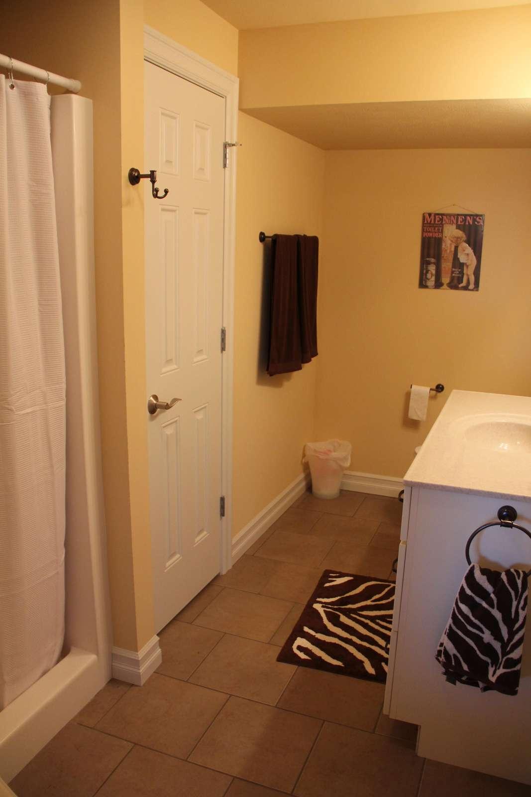 Downstairs Bathroon w/ shower