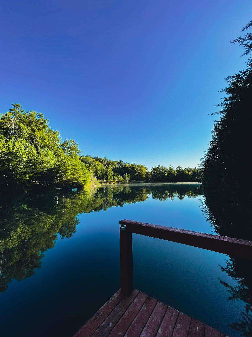 Forestdale Dock View