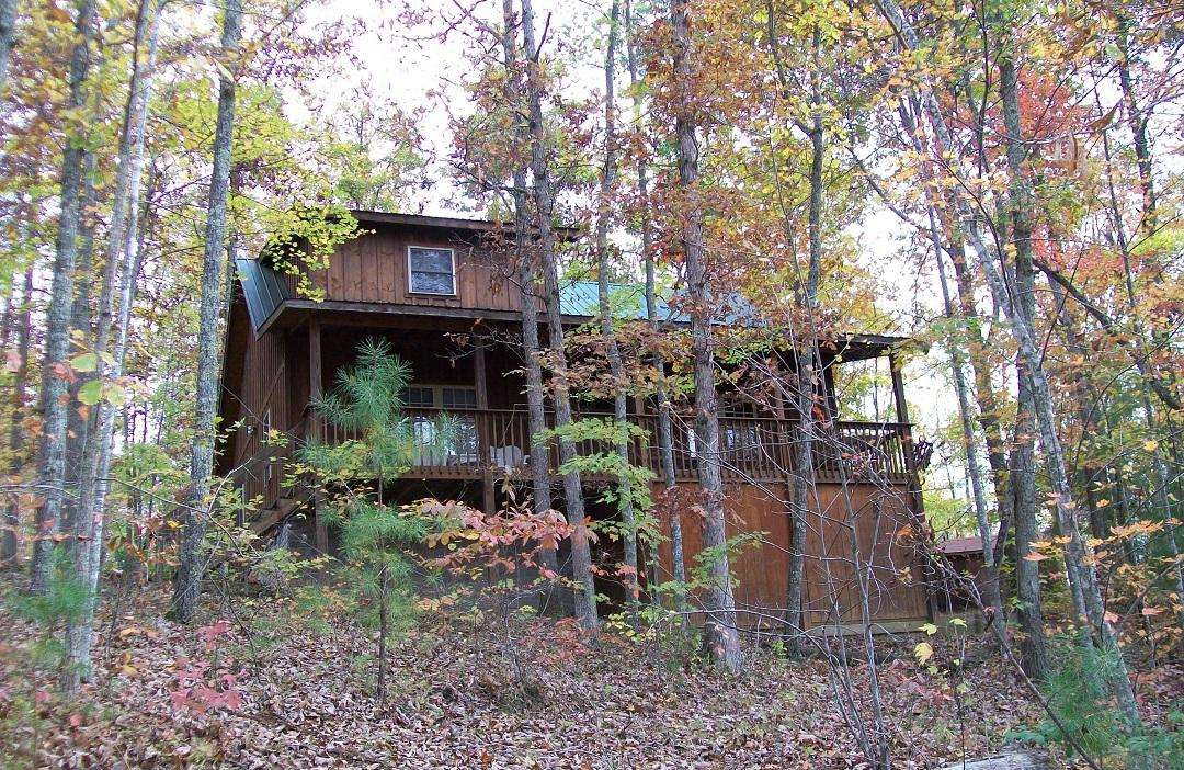 Ron's Big House Cabin in Cliffview Resort