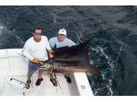 Fishing charters, leaving out of Flamingo daily thumb