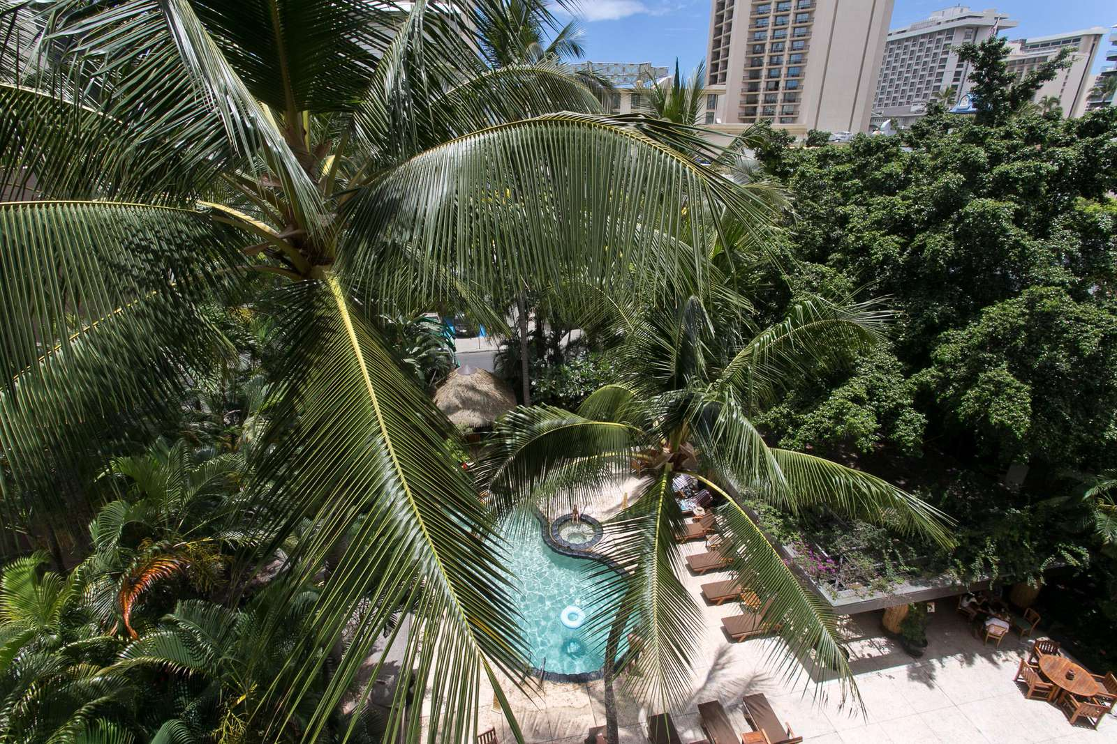 Overlooking the lush pool area