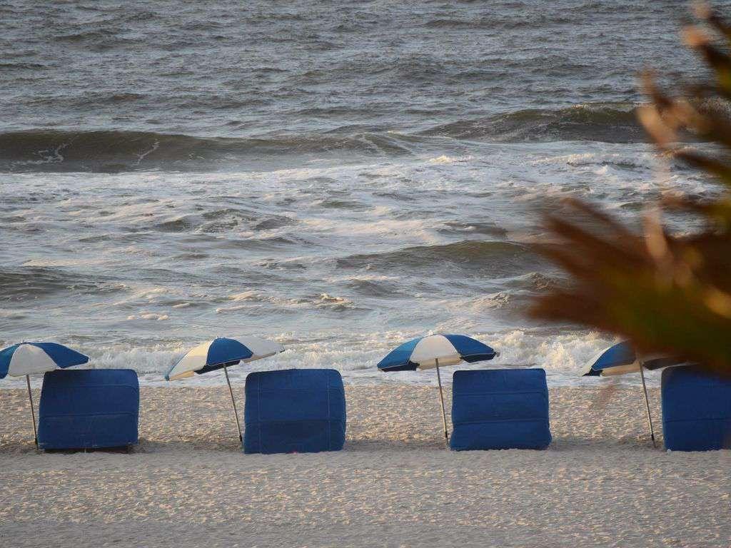 Perdido Beach Service right in front of your condo