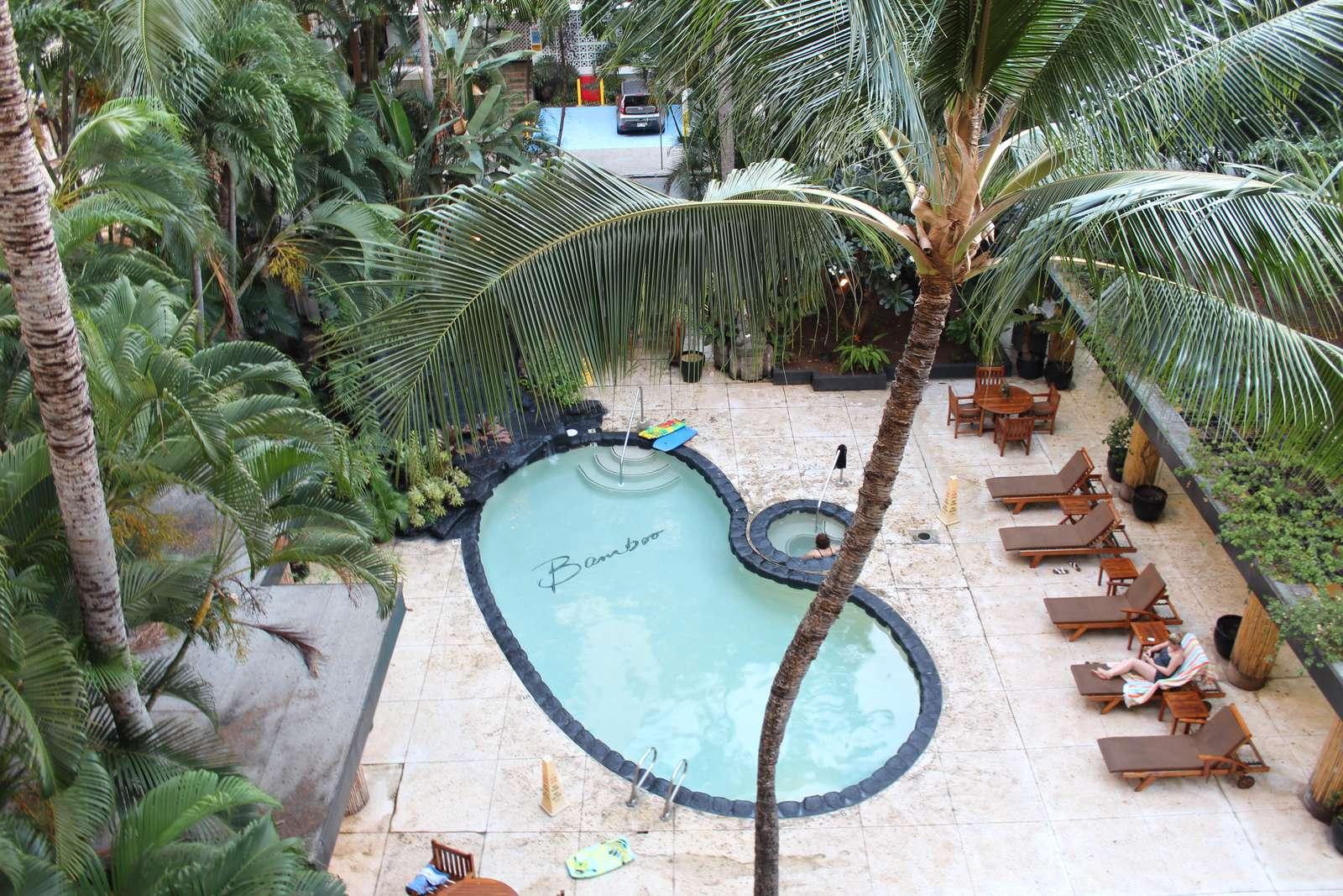 Lush communal pool and sun deck area