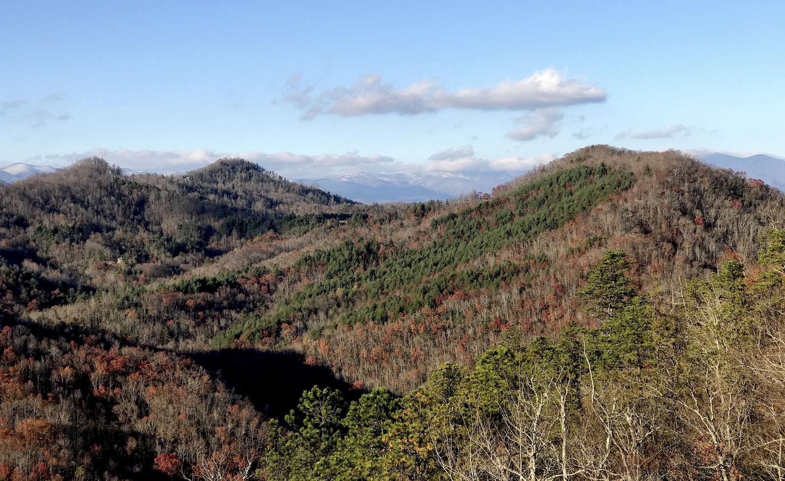 Looking over the Nantahala Forest (Photo taken from the deck)