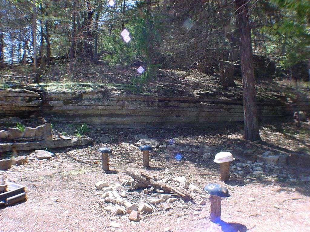 Fire pit area.