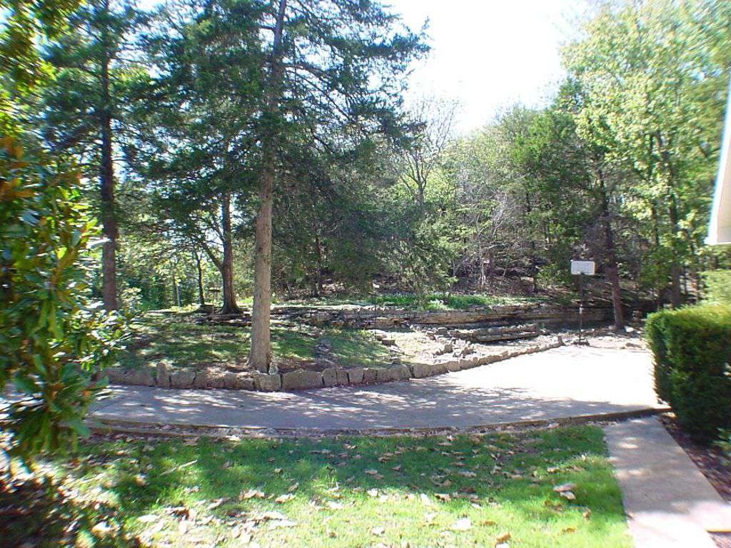 Front yard and driveway.