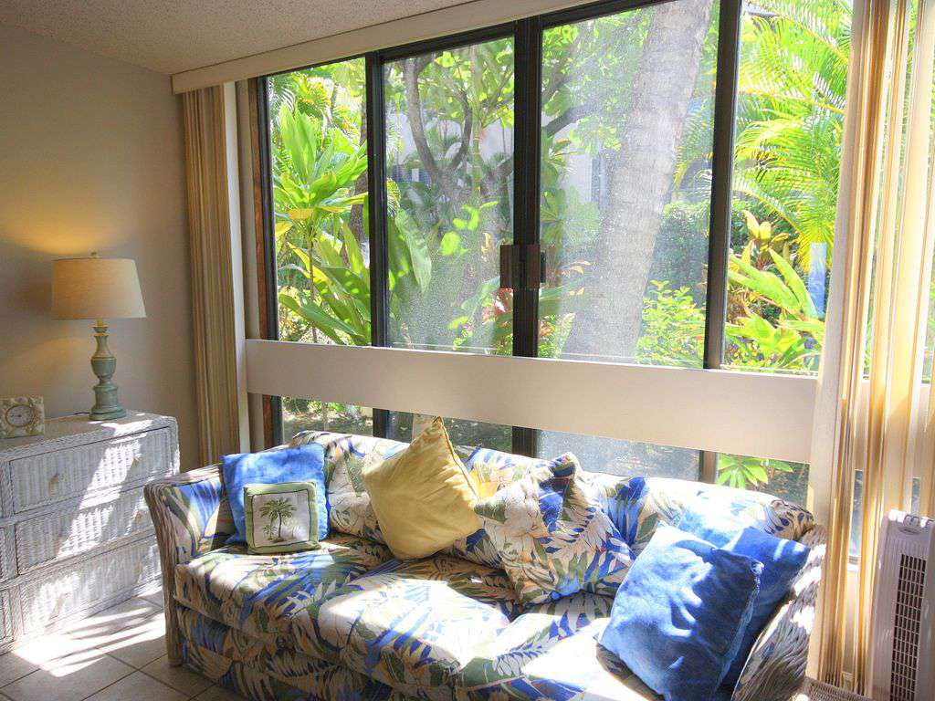 The sunny window in guest bedroom.  Perfect for napping or reading!