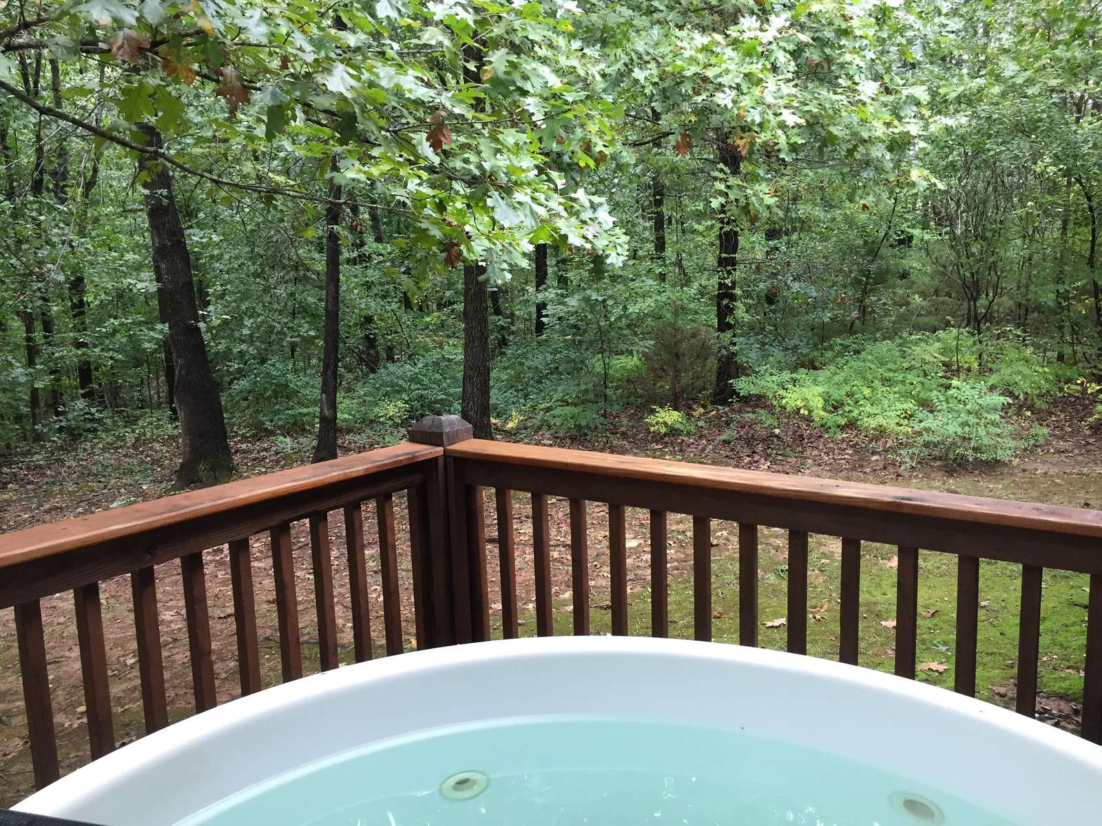 Beautiful Wooded Back Deck