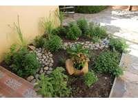 Herb garden thumb