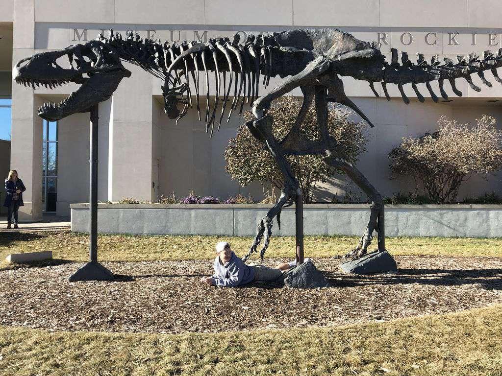 Museum of the Rockies is 5.3 miles away