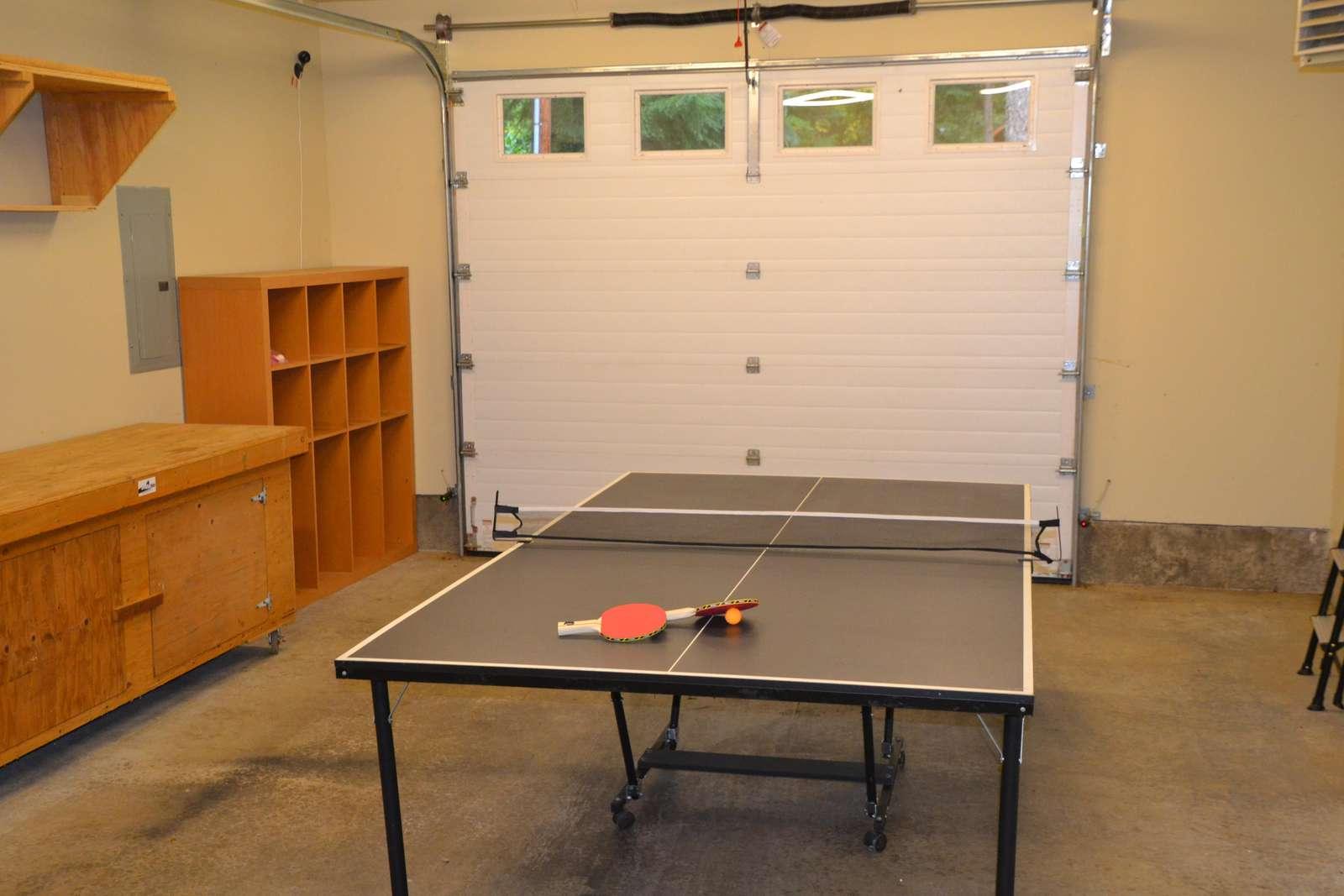 Ping Pong anyone?