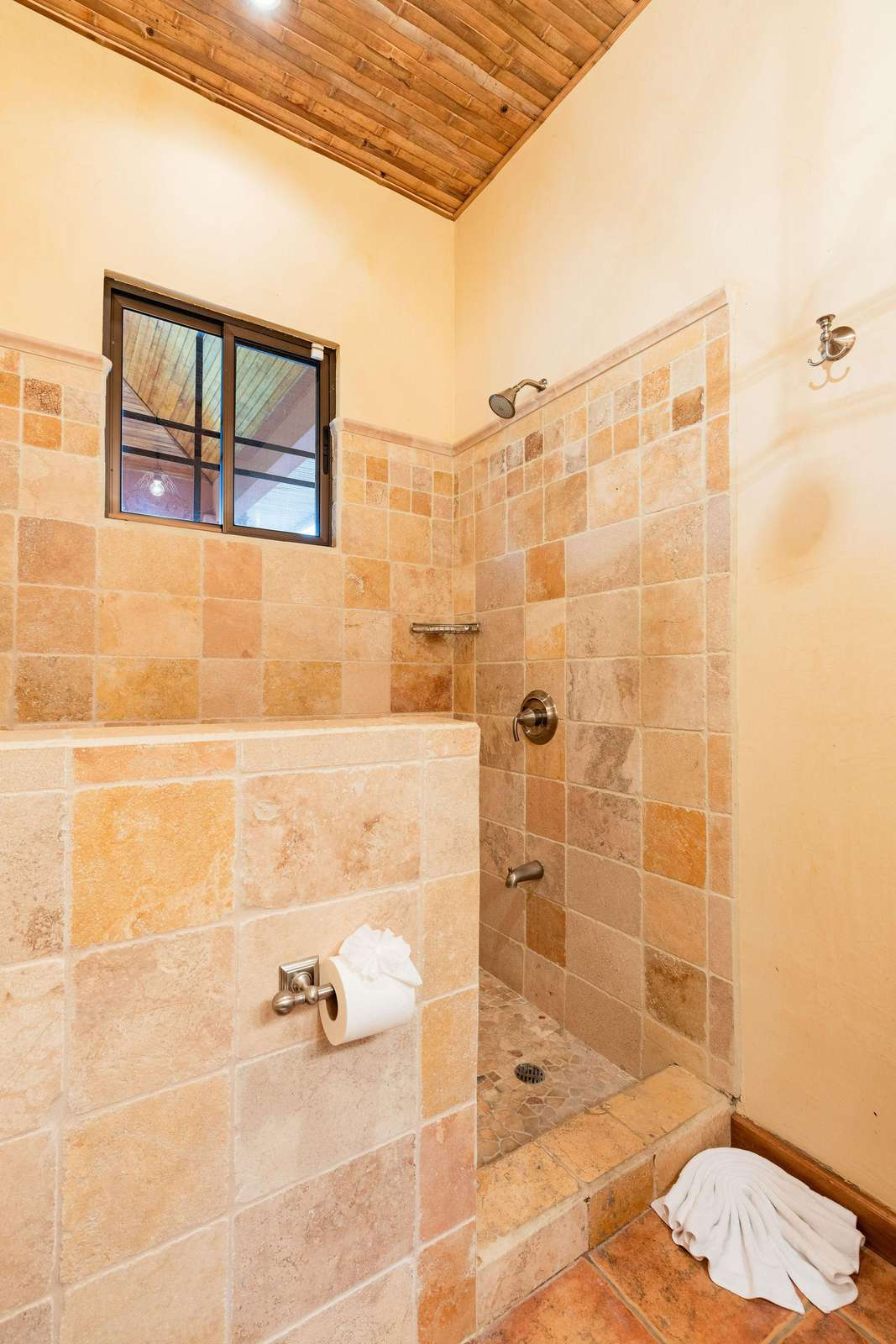 Guest bathroom, walk in shower