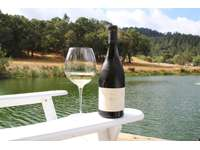 Wine by the Pond thumb