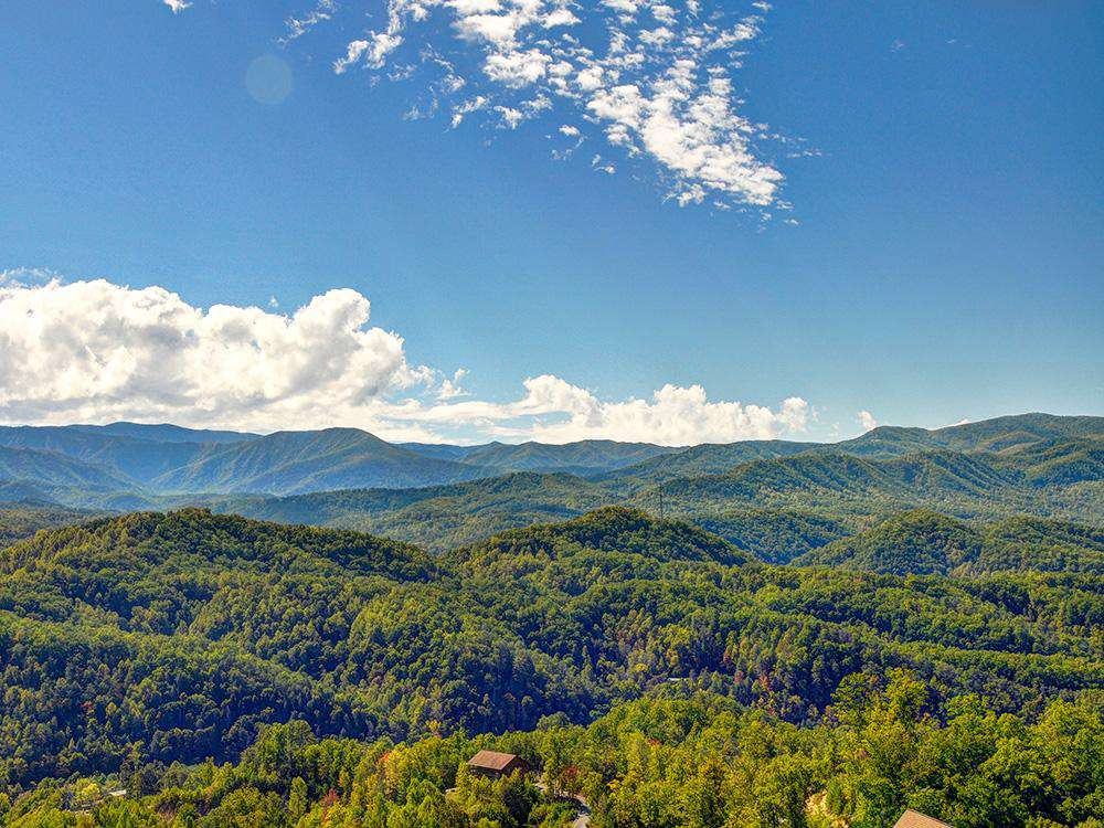 Mountain Splendor (2 BR) - property