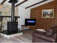Living Room with Wood Burner and TV thumb