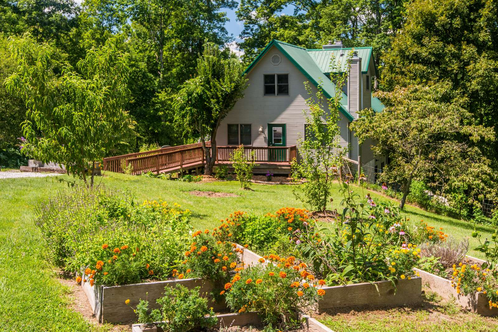 Chanterelle Chalet Cabin - property