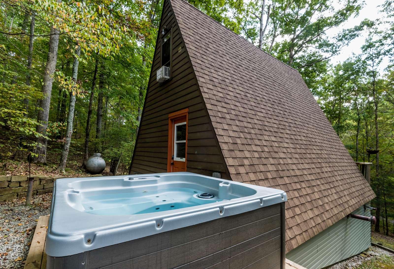Robyn's Nest Vacation Cabin - property